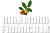 logo-marmara4